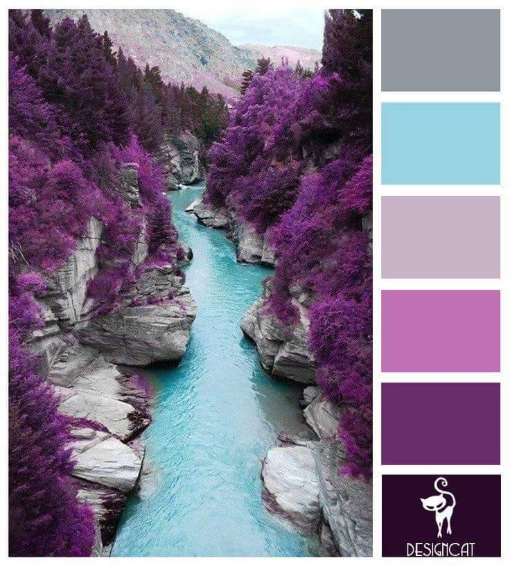 purplegray.jpg